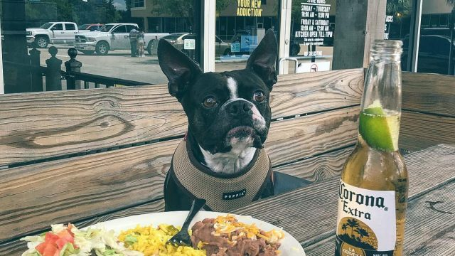 Fuzzy's Taco Shop – San Angelo, TX