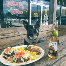 Latest dog friendly featured restaurant